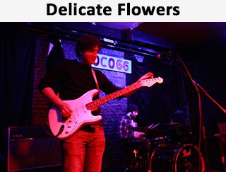 Delicate Flowers_Web